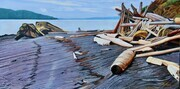 Driftwood Palace, Pender Island 24 x 48